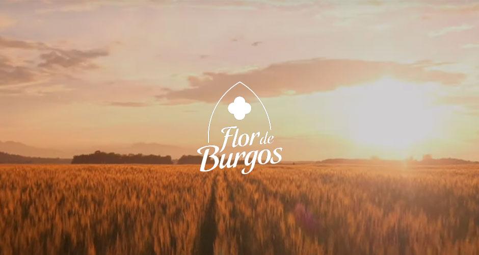 CAPSA FOOD adquiere el 50% de Lácteas Flor de Burgos S.L.