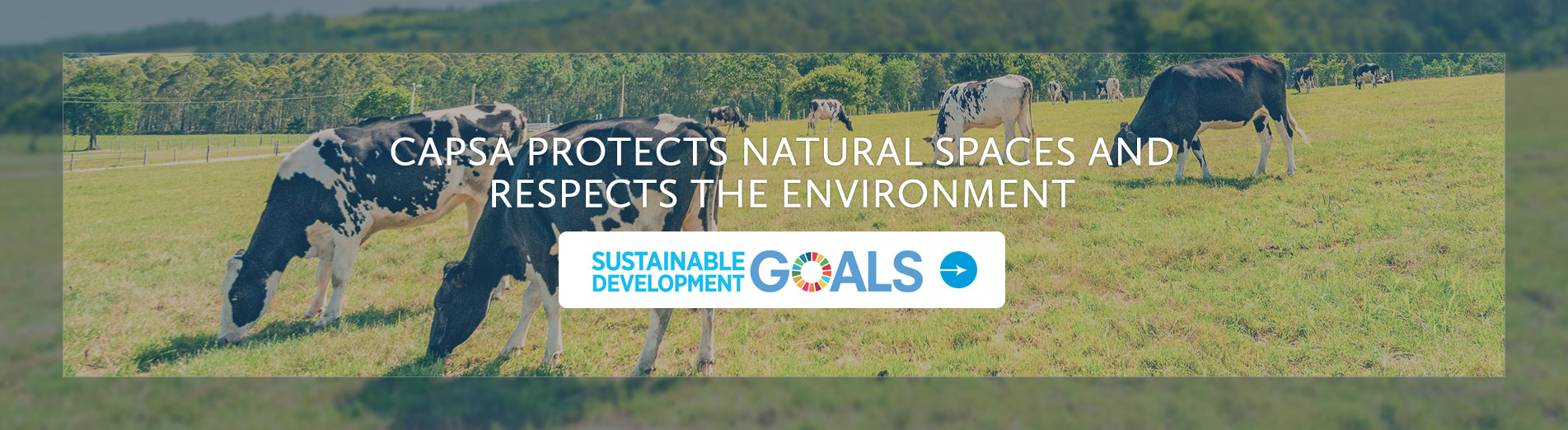Capsa protects natural spaces and respects the environment